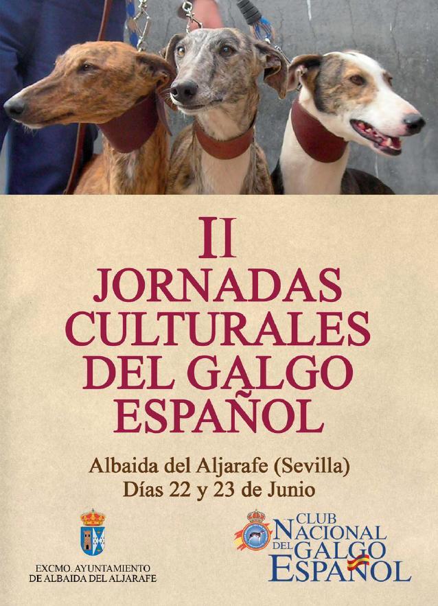 Journées culturelles autour du galgo 22/23 Juin Albaida (spain) Page110