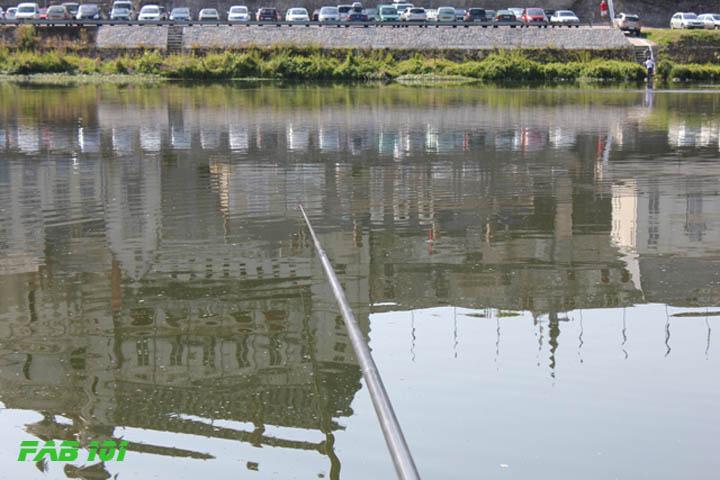 Matinée pêche au coup en Loire 0610