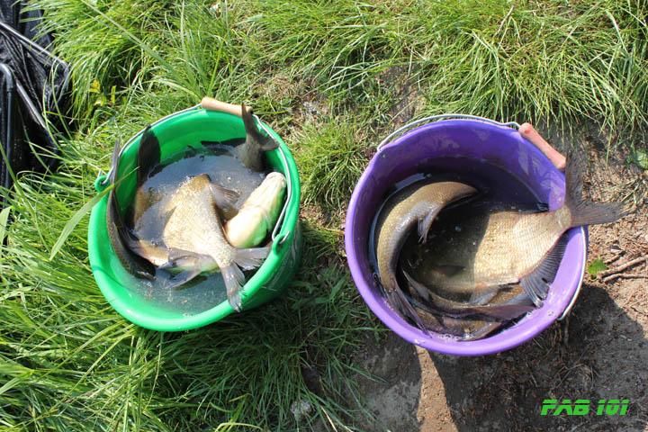 Matinée pêche au coup en Loire 6110