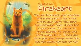 Who is your favorite cat?? Firehe13