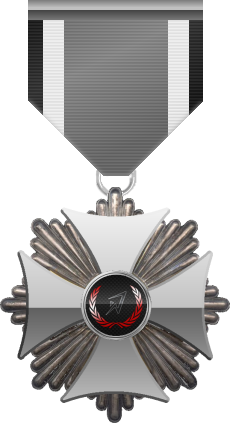 Silver level of Silver Cross of the Silver Arrows - This award is given to a member who distinguished in a number of Community Events. Silver level is the second of five.