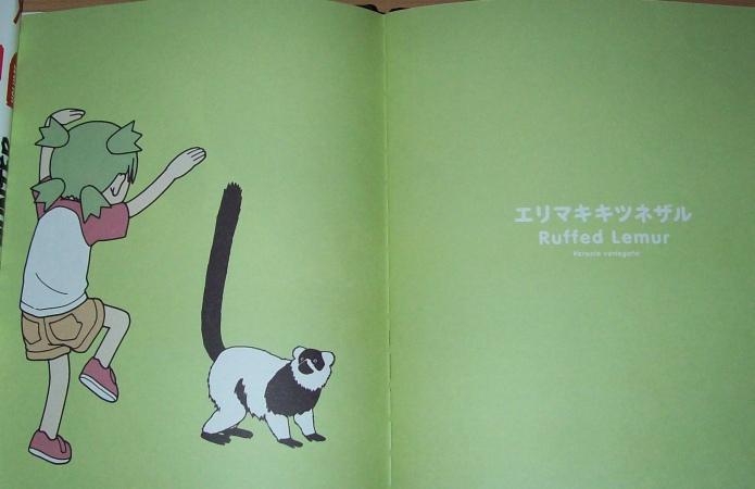 Les art-books, cay le bien! 100_4922