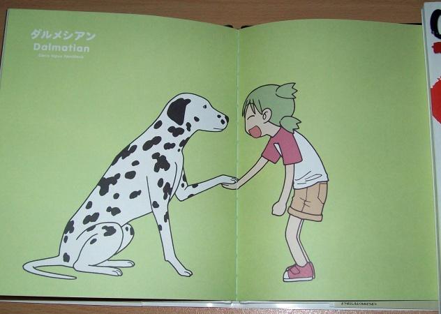 Les art-books, cay le bien! 100_4924