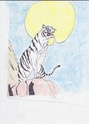 Autres dessins non L.O Tigre10