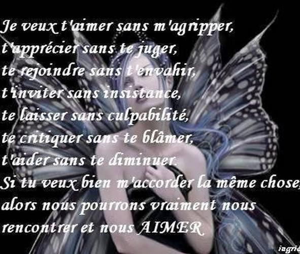 Proverbes en images Amour - Page 9 B08af310