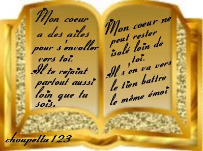 Proverbes en images Amour - Page 9 Sa1jvk10