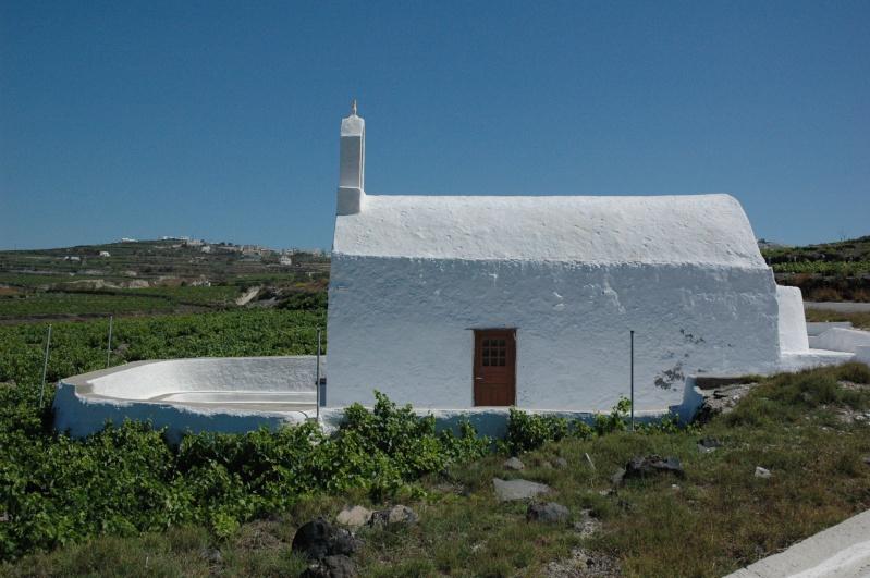 La Grèce vinicole Dsc_2110