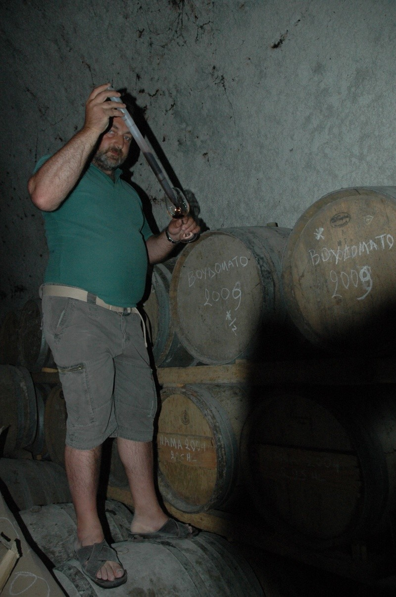 La Grèce vinicole Dsc_2510