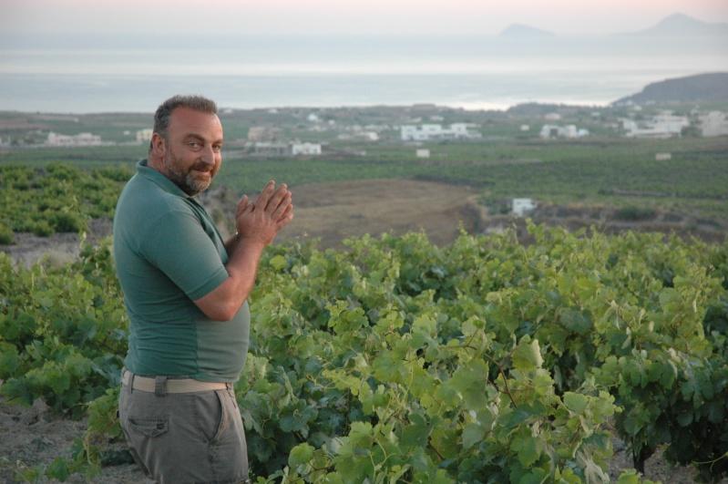La Grèce vinicole Dsc_2511