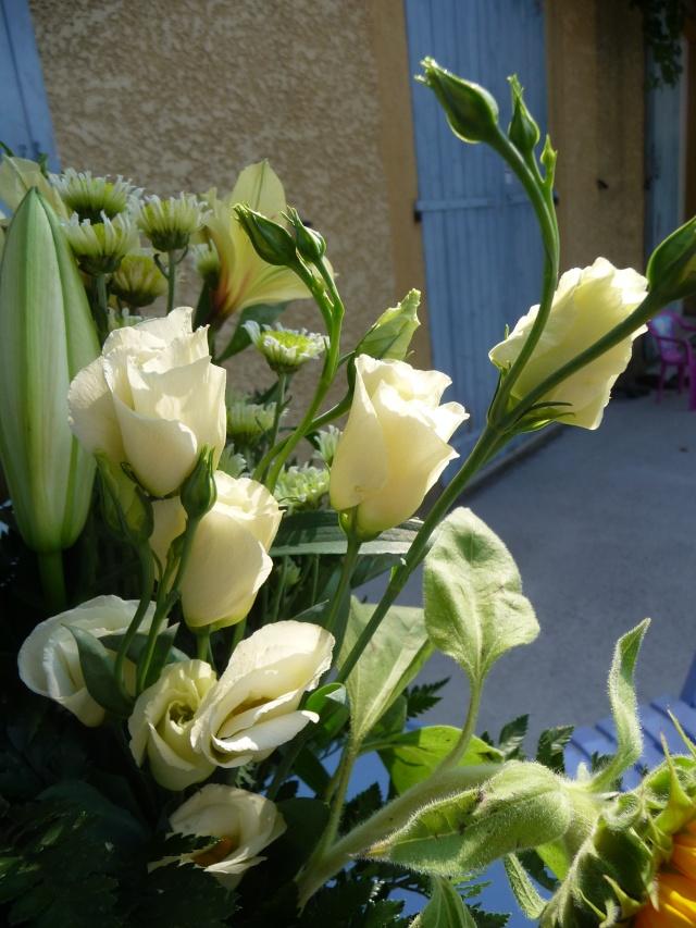 Bouturer les fleurs de bouquet P1150128