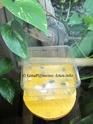 Fütterung Phelsuma grandis 110