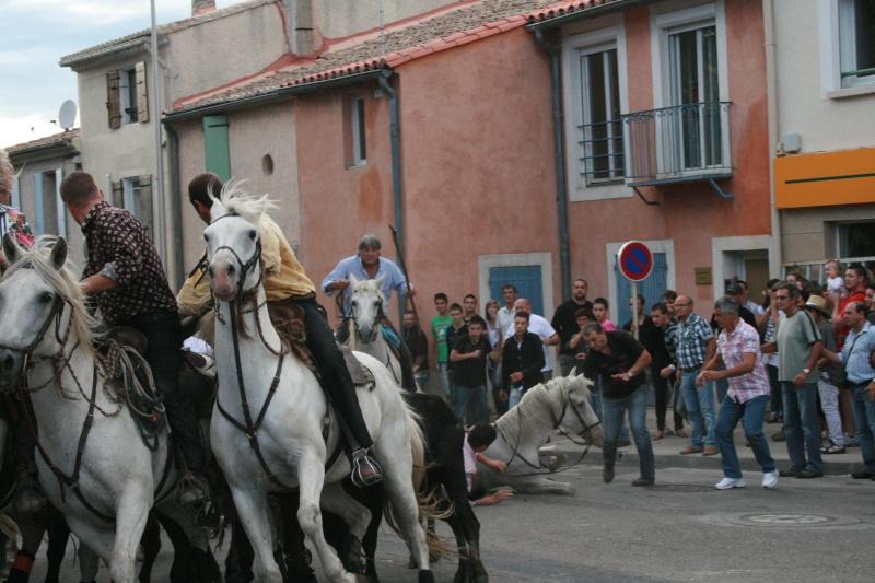 bouillargues 2011 Img_6117