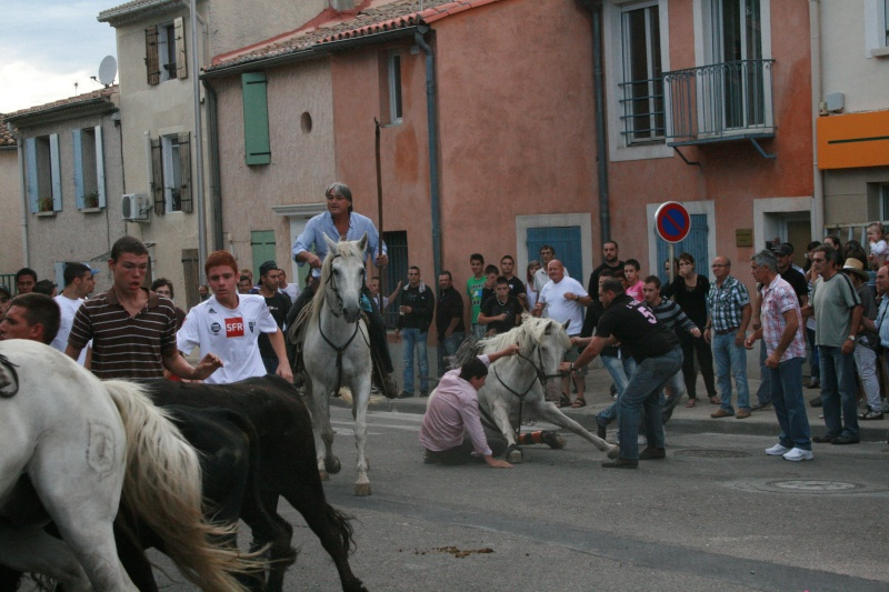 bouillargues 2011 Img_6118