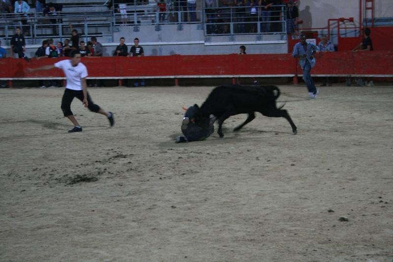bouillargues 2011 Img_6219
