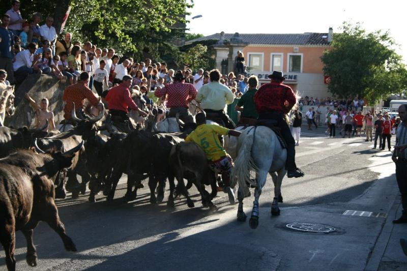 bouillargues 2011 Img_6229