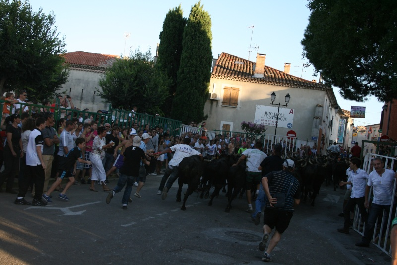 bouillargues 2011 Img_6316
