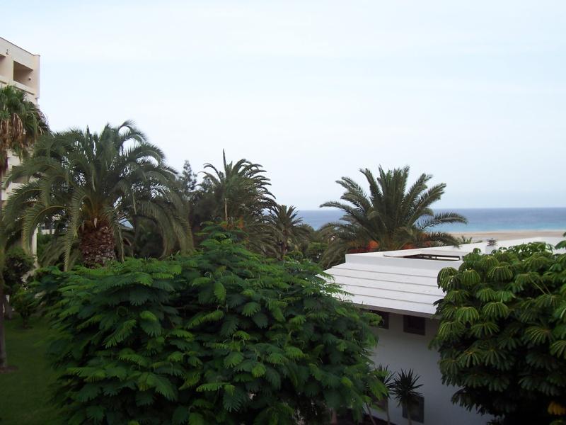 Canary Islands, Fuerteventura, Costa Carma, Melia Gorriones Hotel Fuerte28