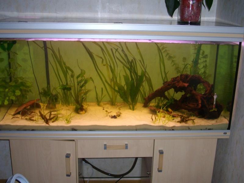 Mon rena aqualife 450 litres 04410