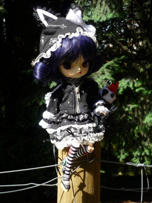 Mes 22 filles (Pullips) - Page 2 Nermal11