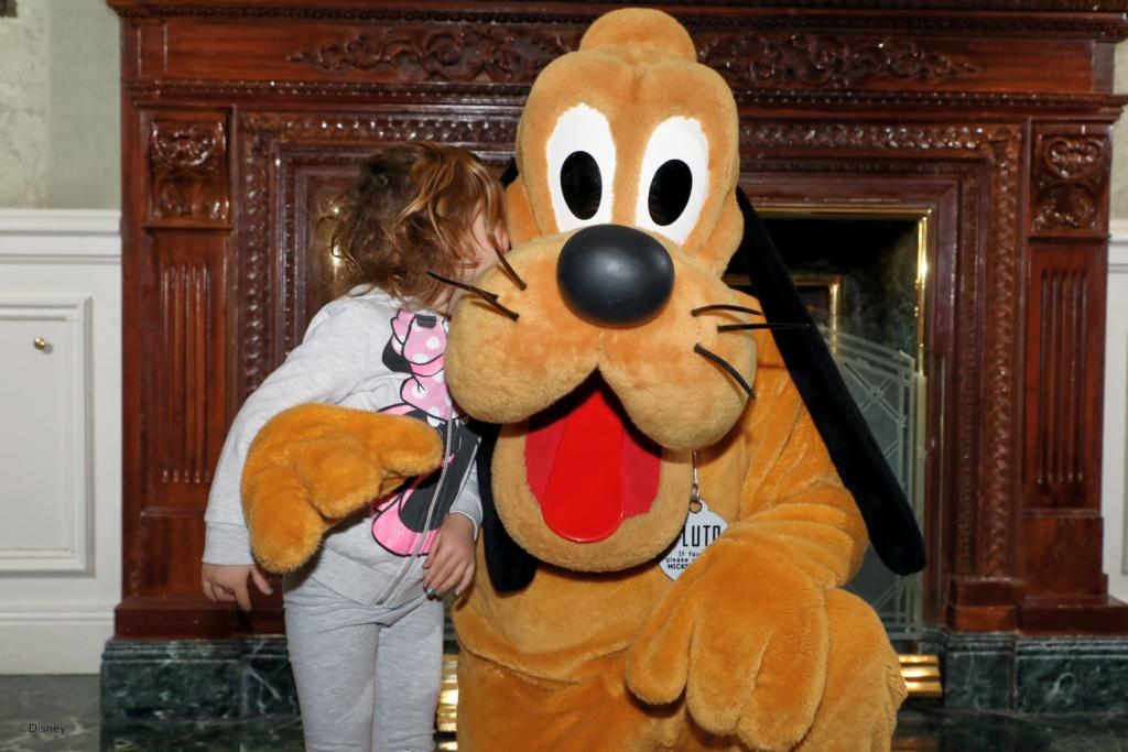 Deux saisons pour le prix d'une !!! Disneyland Hôtel janvier 2019 - Page 4 67500011