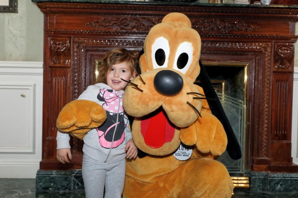 Deux saisons pour le prix d'une !!! Disneyland Hôtel janvier 2019 - Page 4 67500012