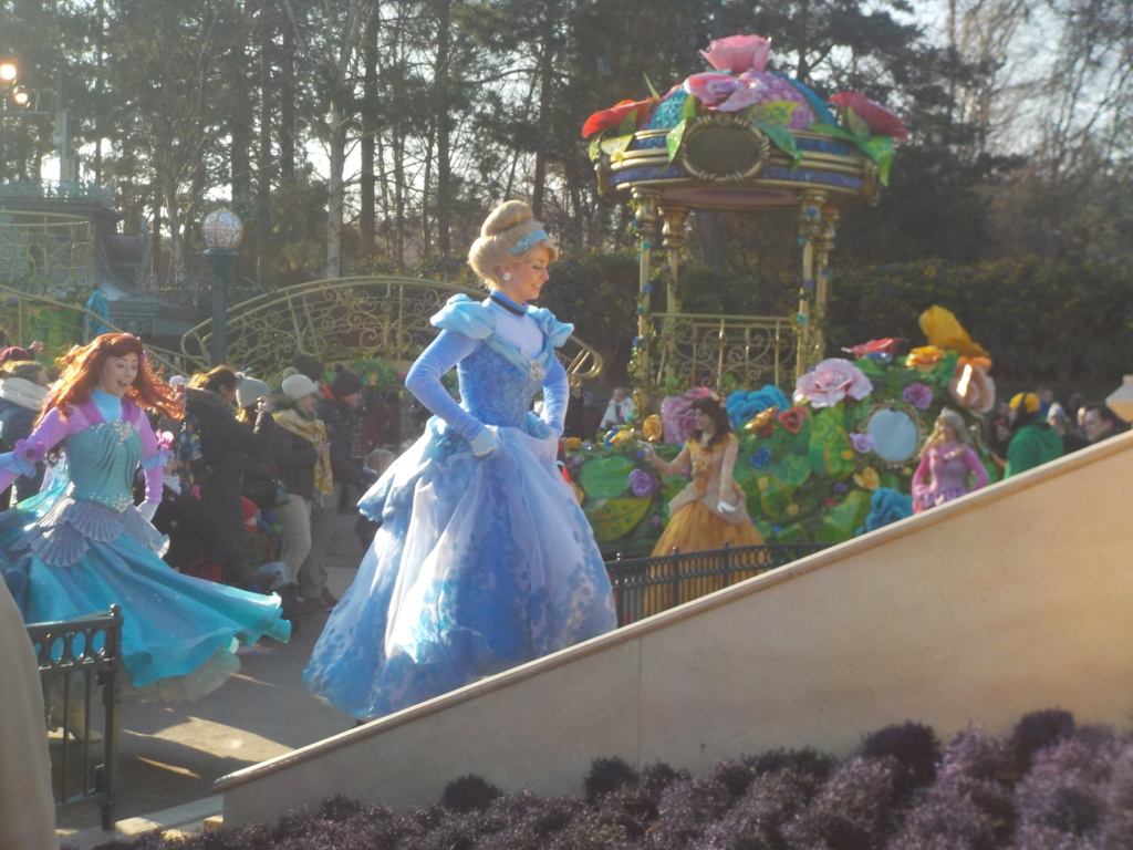 Deux saisons pour le prix d'une !!! Disneyland Hôtel janvier 2019 - Page 4 Dscn3363
