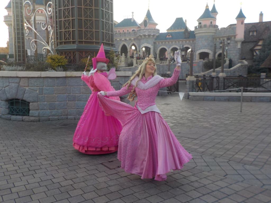 Deux saisons pour le prix d'une !!! Disneyland Hôtel janvier 2019 - Page 5 Dscn3443