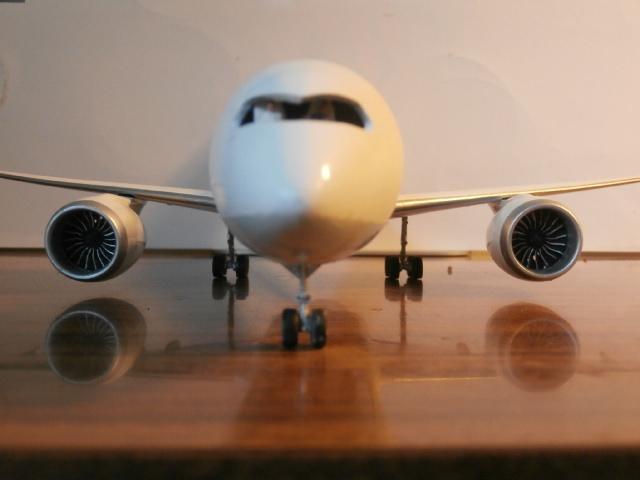 BOEING 787-800 ANA  / ZVEZDA/ 1:144 P7230019