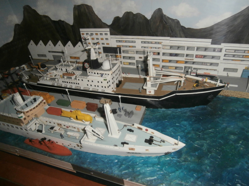 Dio : Brochette de dioramas (échelles variées) par Mille sabords P8300920