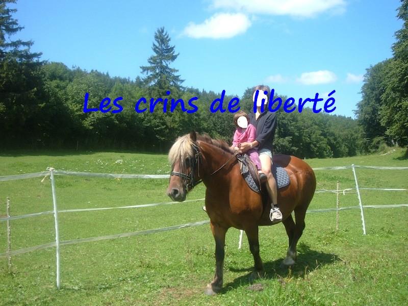 Dept 01, MANDOLINE Comtoise PP, sauvée par Pauline (Août 2012) - Page 6 Copie_10