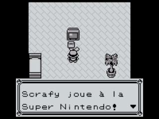 Pokémon version Rouge/Bleue/Verte: Soluce Pokemo11