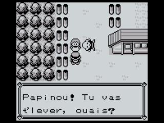 Pokémon version Rouge/Bleue/Verte: Soluce Pokemo15