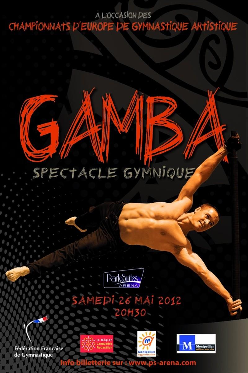 Championnats d'Europe GAM 2012 à Montpellier Affich11