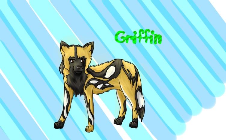 African Wild Dog Griffi10