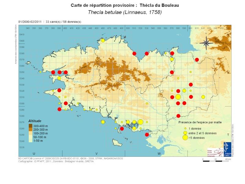 [Thecla du Bouleau (Thecla betulae)] Vive la Chasse ! ... aux œufs de Thecla betulae Thecla12