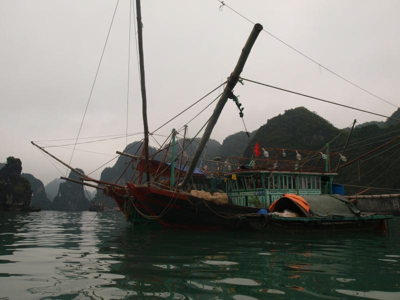 Vietnam... La Baie d'Halong... en Kayak P1197513