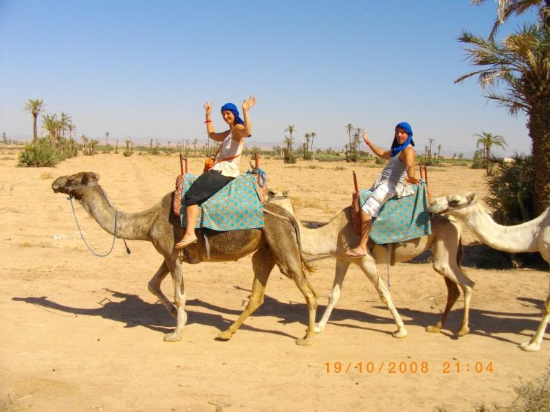 Grues gmtr et gme a Marrakec'h' Imgp3915
