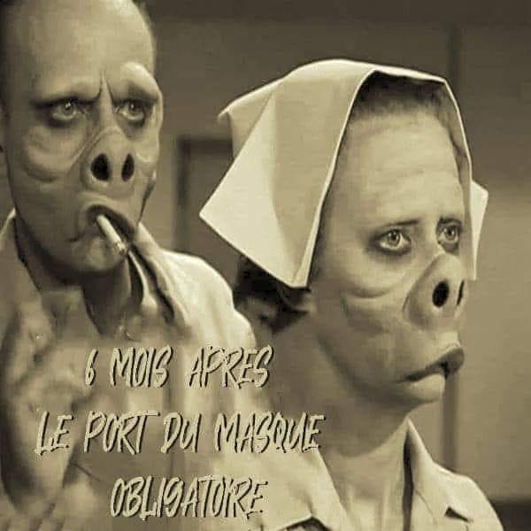 """""""La liberté c'est de porter un masque"""" - Slogan Orwellien de François Legault, P.M. du Québec ! 11706010"""