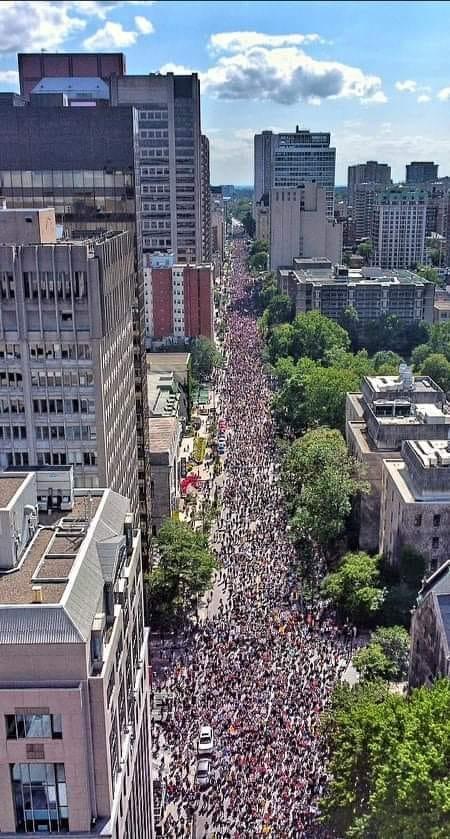 Marche pacifique du 11 septembre à Montréal - Des centaines de milliers de personnes étaient présent 23816712