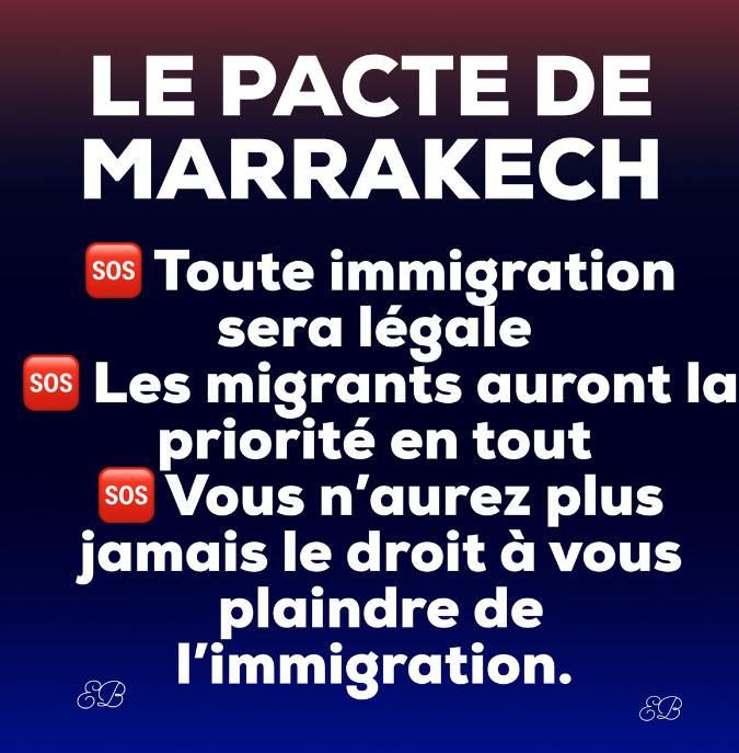 Renaud Camus : Réflexions sur l'immigration et le Grand Remplacement ! - Page 4 Captur51