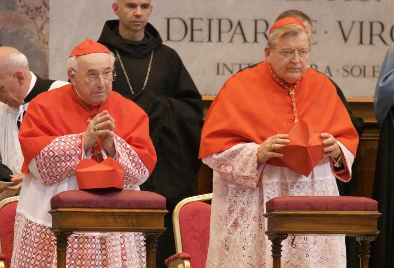 SYNODE AMAZONIEN - (SUITE D'AMORIS LAETITIA) : Nous conduira-t-il au Schisme de l'Église Catholique? - Page 10 Cardin20
