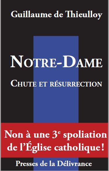 Incendie de Notre-Dame de Paris  - Page 20 F5affe10
