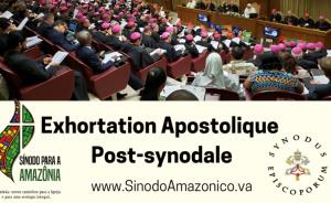 """""""QUERIDA AMAZONIA = CHÈRE AMAZONIE"""" : L'Exhortation du Pape François plus ambigüe qu'il n'y paraît ! Sans-296"""