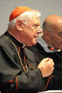 SYNODE AMAZONIEN - (SUITE D'AMORIS LAETITIA) : Nous conduira-t-il au Schisme de l'Église Catholique? - Page 15 Sans-298
