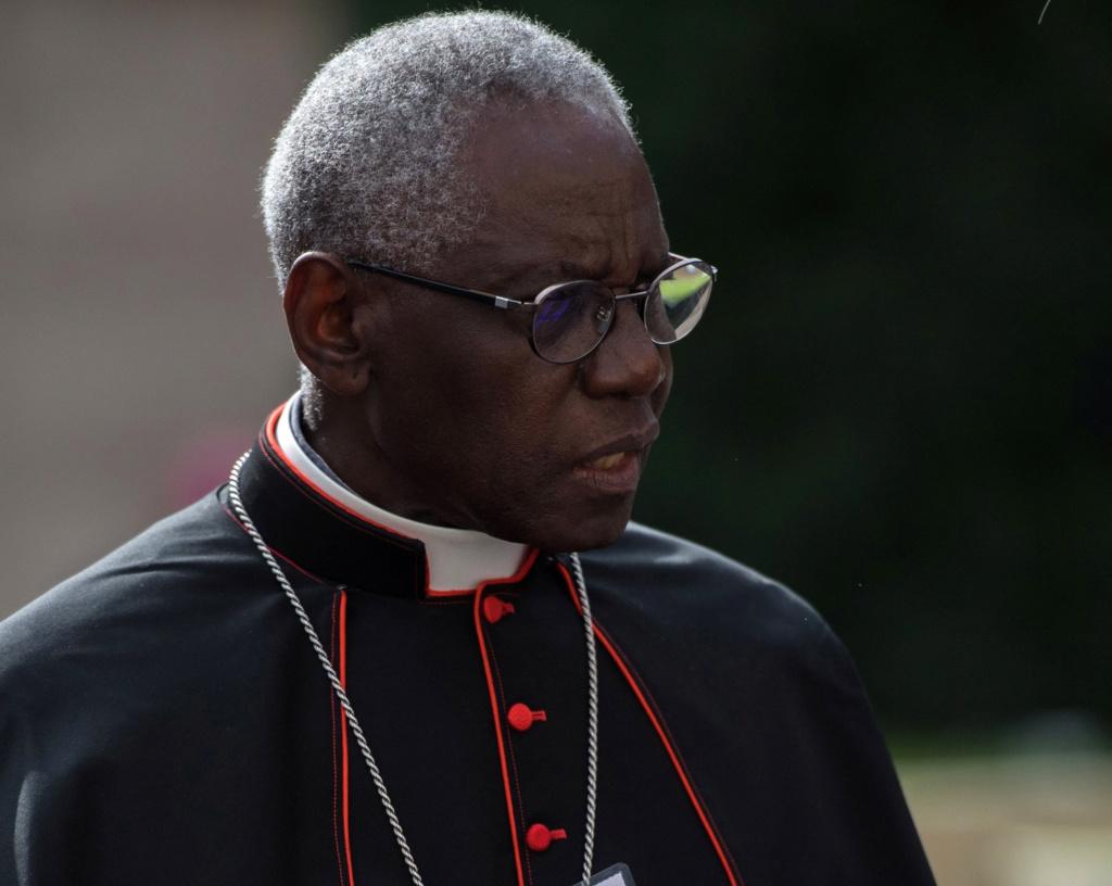 DERNIÈRE HEURE : Benoît XVI appelle le Pape François à ne pas ordonner d'hommes mariés ! Sans-366