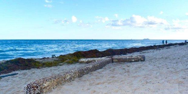 Une mystérieuse Croix de bois sur une plage de Floride  Web-cr10