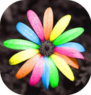 tout est multicolore 393f1910