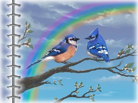 tout est multicolore - Page 5 9bbca410