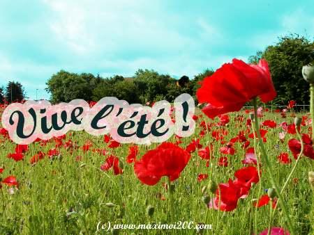 Les Saisons - Page 5 Vive_l10