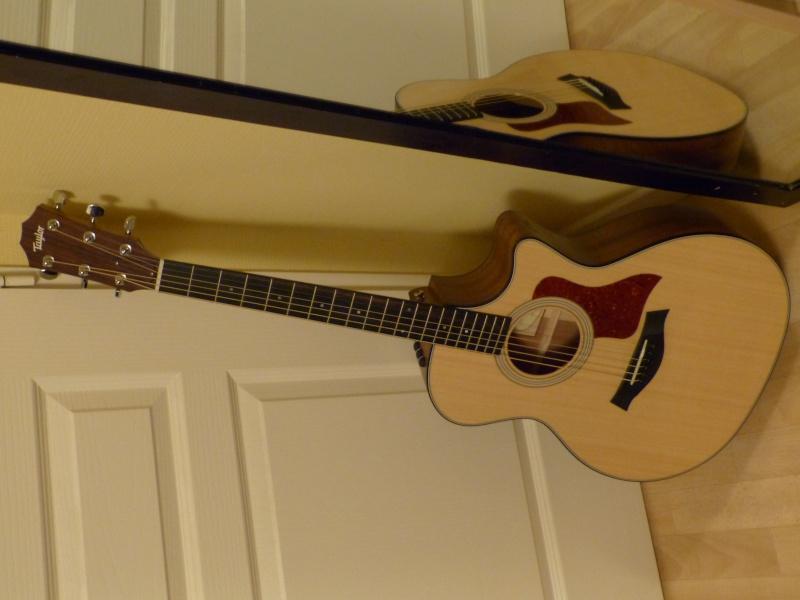 Taylor Acoustic P1000810
